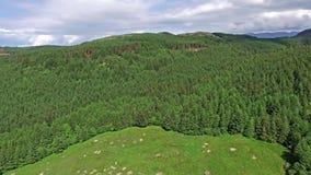 Antenn som panorerar skottet över dalgången mellan Oban och Taynuilt, Argyll arkivfilmer