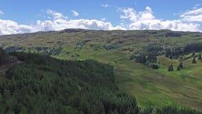 Antenn som panorerar skottet över skogen mellan Oban och Taynuilt, Argyll arkivfilmer