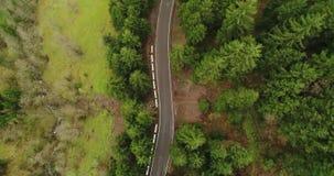 Antenn: Vinka sikten över vägen som fördelar till och med den lösa skogen 4K stock video