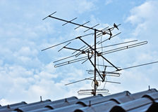 Antenna. Tv on the roof Stock Photography