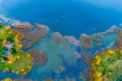 antenna blu della foresta di caduta e del lago Fotografie Stock
