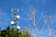 Antenna of Communication Building with blue sky and leafless tre. Antenna of Communication Building tower and blue sky and leafless trees Stock Image