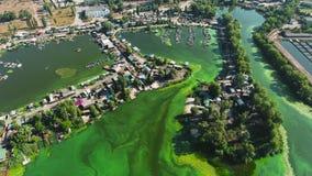 Antenna del fiume inquinante con le alghe verdi con le case ed i bacini della barca sulle banche video d archivio
