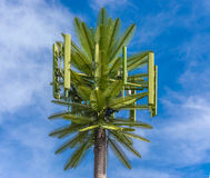 Antenna delle cellule della palma Fotografia Stock