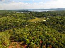 Antenna di bella foresta con il lago Immagine Stock