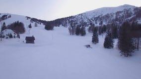 Antenna di gatto delle nevi stock footage