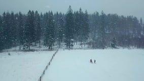 Antenna di inverno di giovani coppie di nozze che eseguono e che si divertono tenersi per mano in precipitazioni nevose pesanti d archivi video
