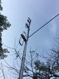 Antenna a dipolo piegata Fotografie Stock