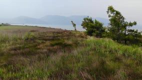 Antenna egea fertile di Marslands 27 video d archivio