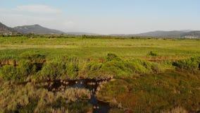 Antenna egea fertile di Marslands video d archivio