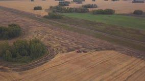 ANTENNA: fucilazione al fuco sopra il campo di terreno arabile Un trattore rosso rimuove il campo nella caduta stock footage