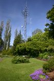 Antenna in a garden Stock Image