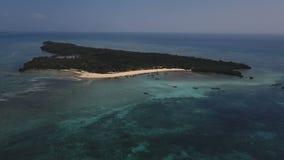 Antenna: Isola di Pangavini coperta di foresta pluviale tropicale, cinghia di pietra intorno al legno, vista aerea dall'alto in b stock footage