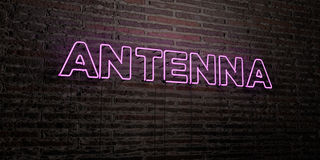 ANTENNA -Realistic Neon Sign on Brick Wall background - 3D rendered royalty free stock image. Can be used for online banner ads and direct mailers Stock Photography