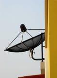 Antenna satellitare della Camera immagini stock