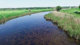 ANTENNA: Un piccolo fiume Vista da sopra Fuchi di volo archivi video
