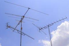 antennae garneli niebo Zdjęcie Stock