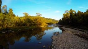 Antenne über dem Fluss im Wald stock video footage