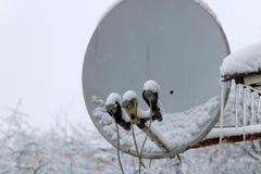 antenne couverte de neige pour recevoir la télévision par satellite en hiver Photographie stock