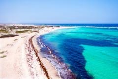 Antenne de Boca Grandi sur l'île d'Aruba dans les Caraïbe Images stock