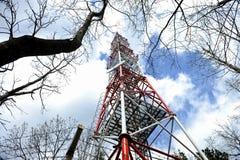 Antenne de GM/M dans les bois Photos libres de droits