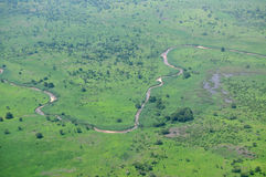 Antenne der afrikanischen Savanne Lizenzfreie Stockbilder