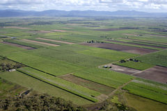 Antenne des australischen Bauernhofes Lizenzfreies Stockfoto