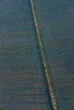 Antenne des champs agricoles pendant l'irrigation des terres Photo stock