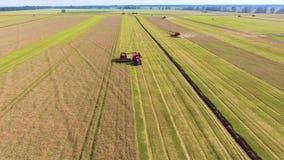 Antenne des Mähdreschers arbeitend an füllendem LKW des großen Feldes mit Weizenkorn stock video footage