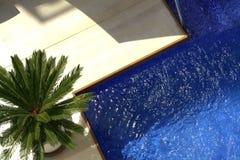 Antenne des Pools und der Palme Stockfotografie