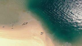Antenne des touristes courant par l'eau sur le chariot lent de haute altitude de plage banque de vidéos
