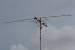 Antenne di televisioni fotografia stock