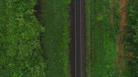 Antenne die voorwaartse mening van spoor en een toerist bewegen die langs het, in bos, op de zomerdag lopen 4K stock videobeelden