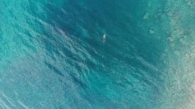 ANTENNE: ein Personentaucher-Schwimmenfischen im haarscharfen Mittelmeer, tief blaues transparentes Wasser, Sommersportferien c stock video