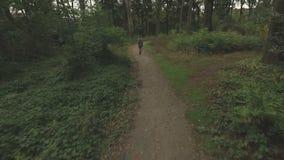 Antenne einer jungen Frau, die durch einen Wald, niedrige Höhe aufspürt den vorwärts folgenden Schuss geht stock footage