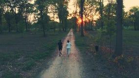Antenne: hommel volgend paar die op plattelandsweg lopen die bospark, openluchtactiviteitengeschiktheid kruisen goed - zijnd conc stock footage