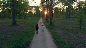 Antenne: hommel volgend paar die op plattelandsweg lopen die bospark, openluchtactiviteitengeschiktheid kruisen goed - zijnd conc stock videobeelden