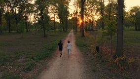 Antenne: hommel volgend paar die op plattelandsweg lopen die bospark, openluchtactiviteitengeschiktheid kruisen goed - zijnd conc stock video