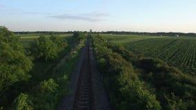 Antenne: lage vlucht over de spoorweg met het omringen van tarwegebieden Sombor, Servië stock video