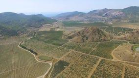 ANTENNE: Landschap van landbouwgrond stock video