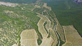 ANTENNE: Landschapslandbouwgrond stock videobeelden