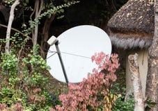 Antenne parabolique dans la cour photographie stock libre de droits