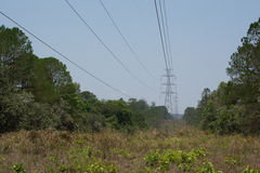 Antenne und Fernleitung errichtet durch den Wald, um t zu schneiden Stockfotos