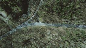 Antenne van autoweg wordt geschoten in het bos op een zonnige de lentedag, hoogste mening die 4K video stock video