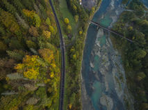 Antenne van de herfstbomen in Karpatische bergen Stock Afbeeldingen