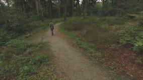 Antenne van een jonge vrouw die door een bos, zeer lage hoogte volgend schot achteruit lopen stock videobeelden