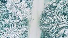 Antenne van een persoon wordt geschoten die in bos in de sneeuw wandelen die Stock Foto