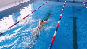 Antenne van een zwemmer in een zwembad wordt geschoten dat stock video