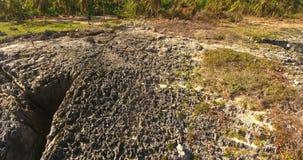 Antenne van exotisch eiland met klippen wordt geschoten en palm bosschoonheid van wilde aard die 4K stock video