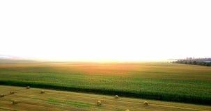 Antenne van gebieden met diverse soorten landbouw wordt geschoten die farming Lucht schot van landbouwgrond Antenne van landbouw  stock video